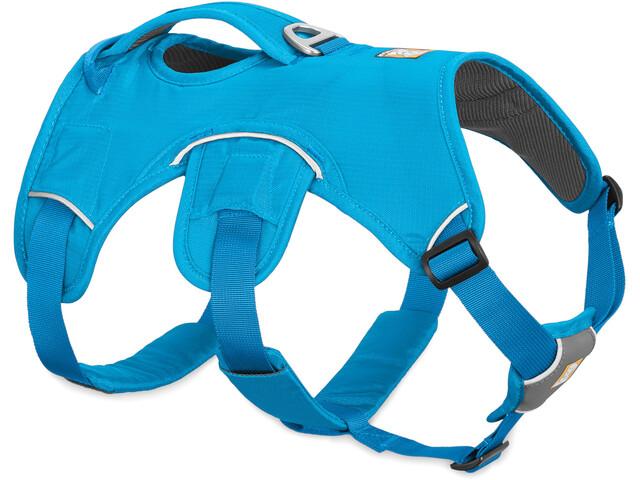 Ruffwear Web Master Baudrier, blue dusk